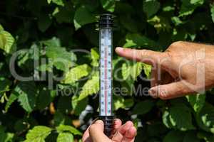 Hot Summer. Thermometer in hand, shows the heat