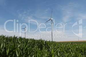 Alternative Energy / Wind turbines in a field