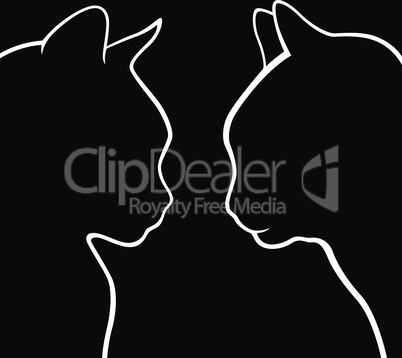 Outline of two cat muzzles