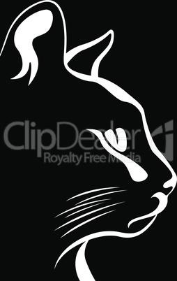Stencil of a cat's muzzle