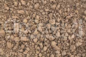 soil on the ground in detail