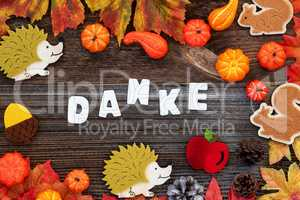 Colorful Autumn Decoration, Text Danke Means Thank You