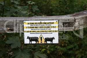 Attention - Unattended grazing Cattle. Keep your distance.