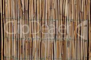 Fence of bamboo sticks fastened with wire