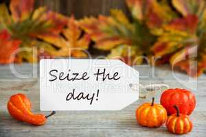 Label With Text Seize The Day, Pumpkin And Leaves