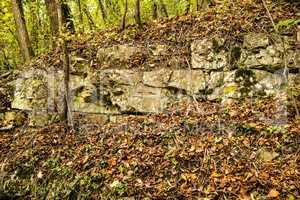 Jura limestone shifts of the Swabian Alb in Germany