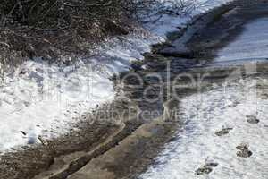 Spring day, running stream with melt water