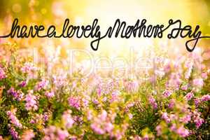 Sunny Erica Flower Field, Calligraphy Have A Lovely Mothers Day