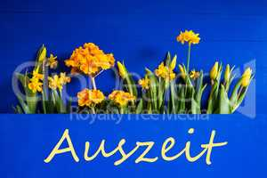 Spring Flowers, Tulip, Narcissus, Text Auszeit Means Downtime