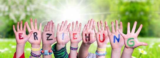 Children Hands Building Word Erziehung Means Education, Grass Meadow