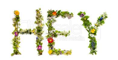 Flower And Blossom Letter Building Word Hey