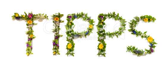 Flower And Blossom Letter Building Word Tipps Means Tips