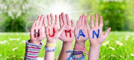 Children Hands Building Word Human, Grass Meadow