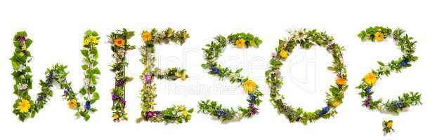 Flower And Blossom Letter Building Word Wieso Means Why