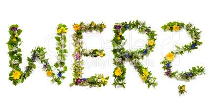 Flower And Blossom Letter Building Word Wer Means Who
