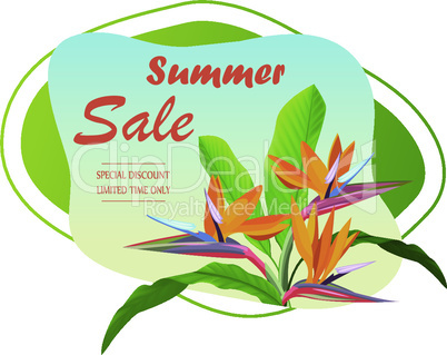 Summer background design with tropical elements. background and leaves - sale banner, poster or voucher discount. EPS 10