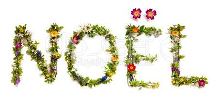 Flower And Blossom Letter Building Word Noel Means Christmas