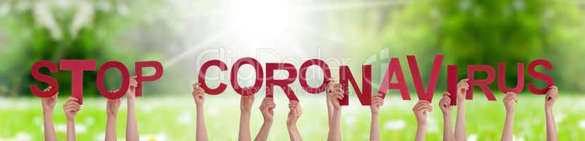 People Hands Holding Word Stop Coronavirus, Grass Meadow