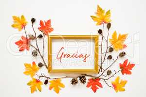Colorful Autumn Leaf Decoration, Frame, Text Gracias Means Thank You