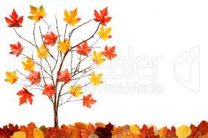 Tree With Colorful Leaf Decoration, Copy Space