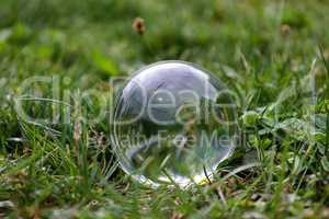 Transparent glass ball lies on a meadow in the grass